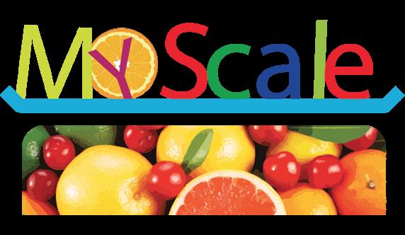 My Scale, catalogo e vendita bilance professionali digitali